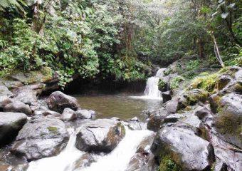 Bassin Paradis à Capesterre, Guadeloupe