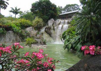 Vue sur la cascade du jardin botanique, Deshaies, Guadeloupe