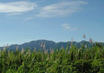 Vue sur le massif montagneux de la Basse-Terre, Guadeloupe