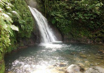 Vue sur la Cascade aux Ecrevisses, Guadeloupe