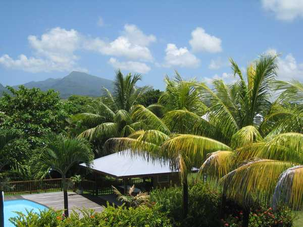 The lush tropical garden in Lamateliane