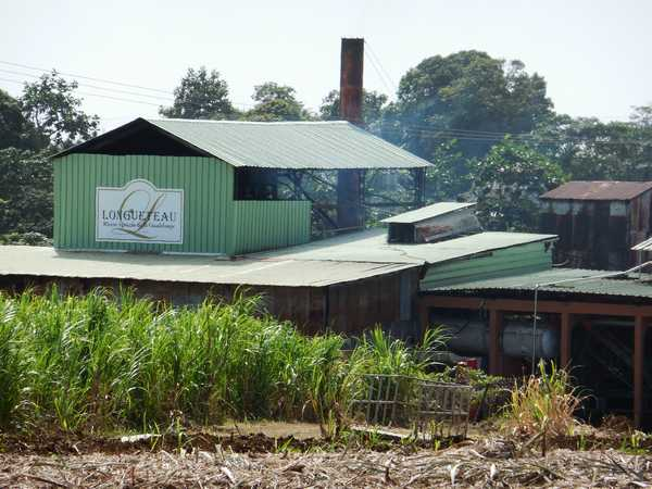 The Longueteau Distillery, close to your holiday rental in Guadeloupe