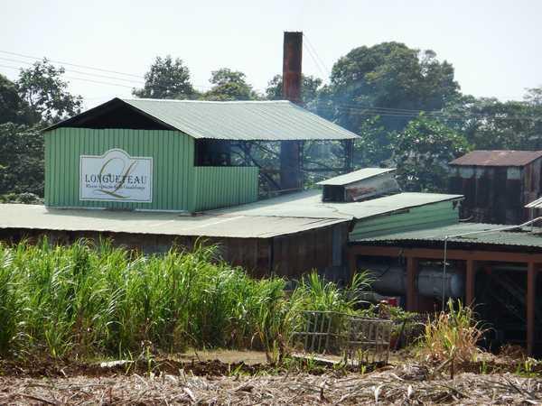 Distillerie Longueteau, voisine de votre location en Guadeloupe.