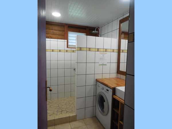 The bathroom with walk-in shower and washing machine