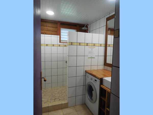 Salle d'eau avec douche à l'italienne et lave-linge.